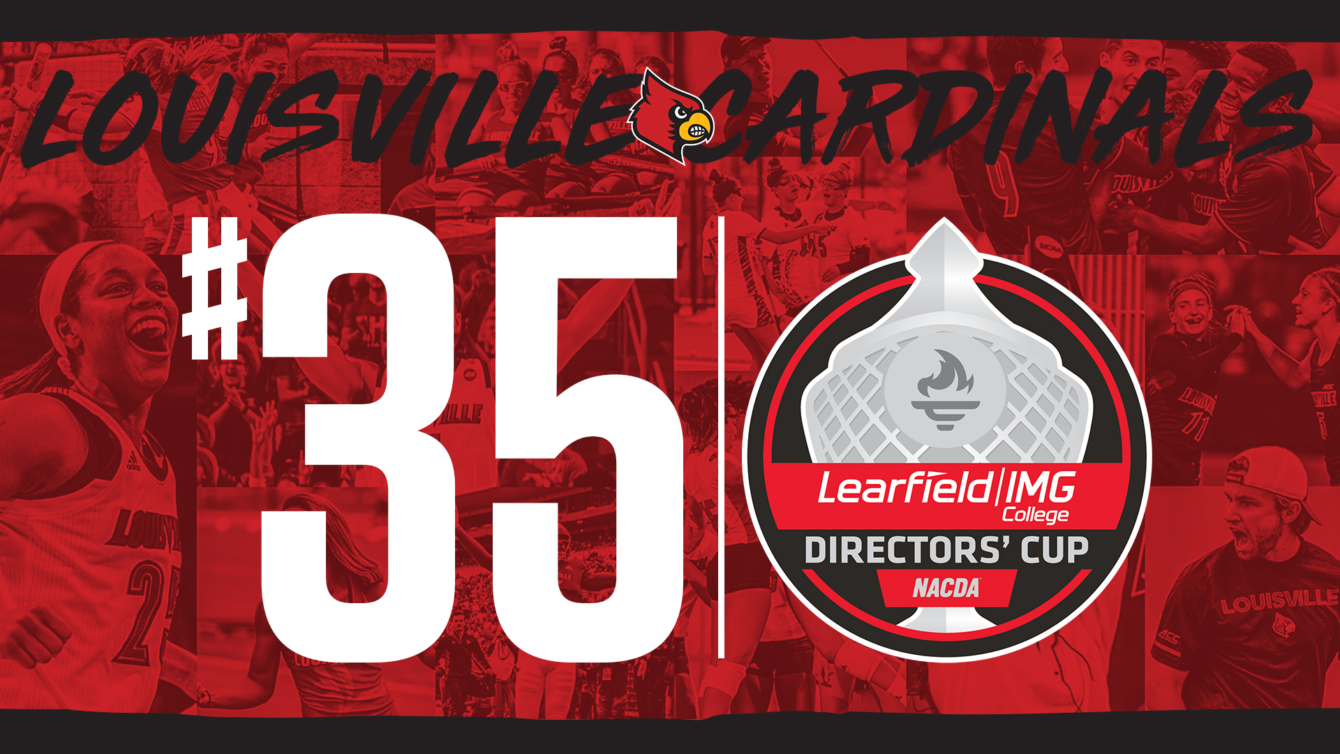 Cardinals Finish 35th In Final Directors Cup Standings